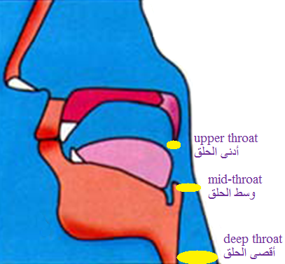 makhraj of arabic letters pdf